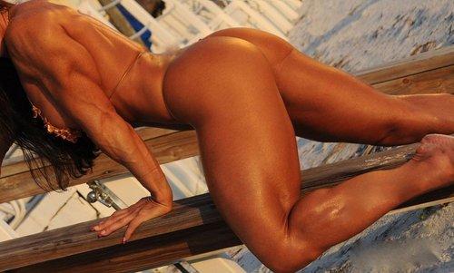 musclevixen